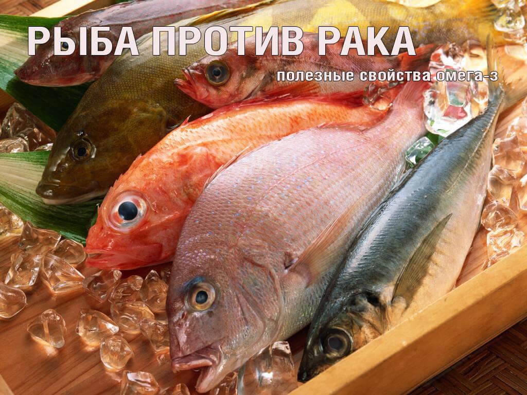 zamorozhennaja_ryba-1024x7681.jpg